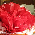 Giant Mexican Tissue Paper Flowers