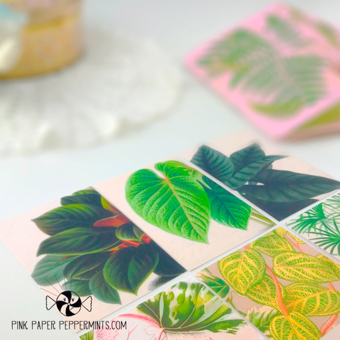 Vintage_plant_lady_journal_cards_2